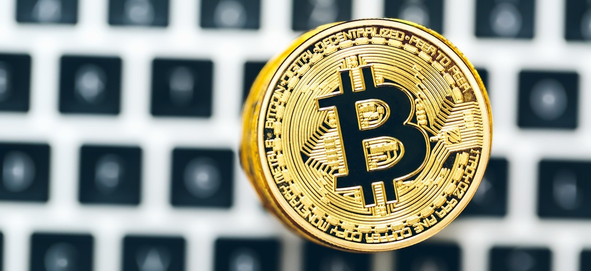 Bitcoins kaufen schweizer how to bet on dogs at the tracks