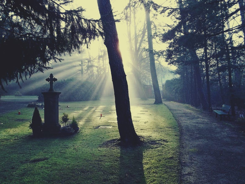 Ein Grab auf einem Friedhof